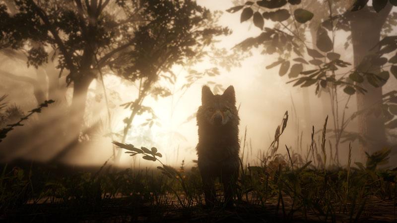 Análisis Read Dead Redemption 2, arthur morgan, rockstar games, analisis, review RDR 2, fauna